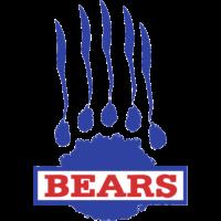 Berlin Bears